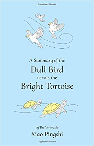 Dull Birds Vs Bright Tortoise